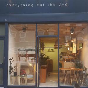 everything but the dog