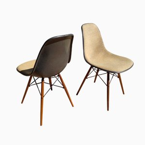 Elephant Grey DSW Chairs by Charles and Ray Eames for Herman Miller, Set of 2