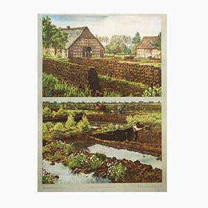 Deutsches Vintage Torfabbau Schulplakat