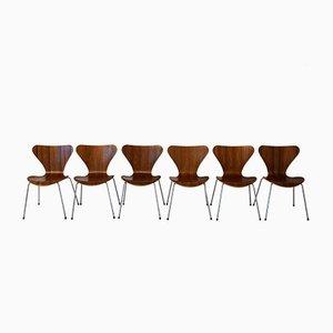 Dänische 3107 Stühle aus Teakholz von Arne Jacobsen für Fritz Hansen, 6er Set