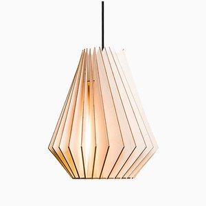HEKTOR Birch Pendant Light by Paul Girardet for Iumi