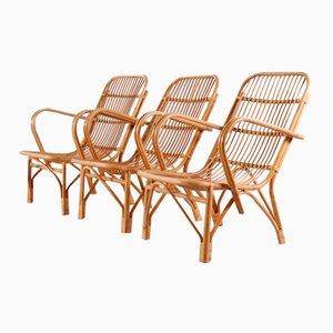 Vintage Bambus Gartenstühle, 1950er, 3er Set
