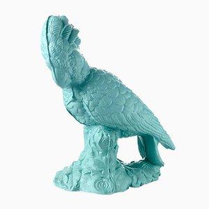Perroquet en Céramique par Botteganove