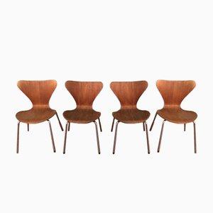 3107 Ant Teak & Schichtholz Stühle von Arne Jacobsen für Fritz Hansen, 1960er, 4er Set