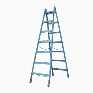 Vintage Hungarian Ladder in Pine, 1950s
