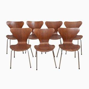 Model 3107 Teak & Plywood Ant Chairs by Arne Jacobsen for Fritz Hansen, 1960s, Set of 7