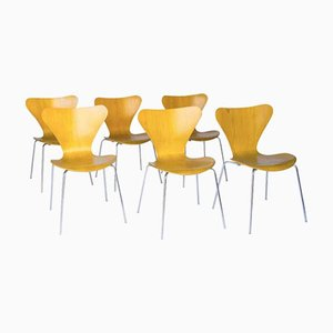 Beschichtete Vintage 3107 Butterfly Stühle von Arne Jacobsen für Fritz Hansen, 6er Set