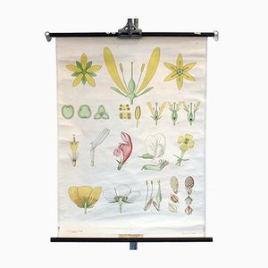 Vintage Blossom Wall Chart