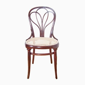 Antique Chair No. 25 from Thonet, 1880s