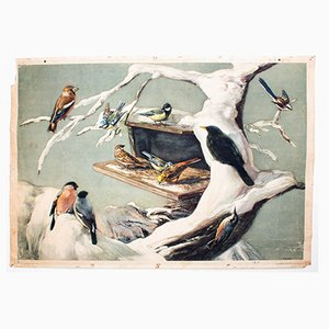 Tableau Mural Swallow par F. Zerritsch, 1954