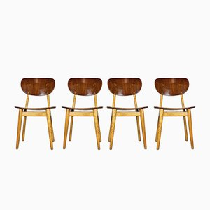 Combex Series SB11 Dining Chairs by Cees Braakman for Pastoe, 1950, Set of 4