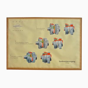 Driving School Wall Chart of Synchronizing Operation from Opel, 1950s
