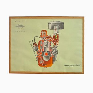 Driving School Wall Chart of a Motor Cross Section from Opel, 1950s