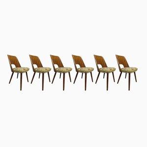 Vintage Esszimmerstühle von Oswald Haerdtl für Thonet, 6er Set