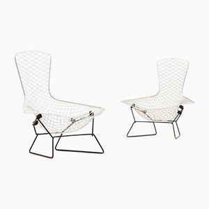 Bird Stühle von Harry Bertoia für Knoll International, 1960er, 2er Set