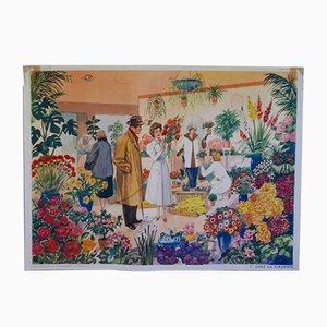 Poster scolastico Mid-Century raffigurante un negozio di fiori