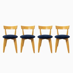 Carugo Chairs by James Irvine for Cappellini, 1990s, Set of 4