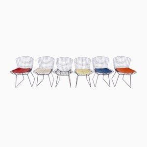 Stühle von Harry Bertoia für Knoll, 1960er, 6er Set