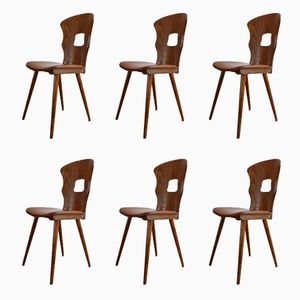 Gentian Dining Chairs from Baumann, 1950s, Set of 6