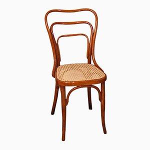 Jugendstil Modell Nr. 248 Stuhl von Adolf Loos für Jacob & Josef Kohn, 1900er
