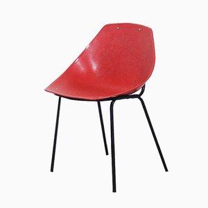 Shell Stuhl von Pierre Guariche für Meurop, 1950er