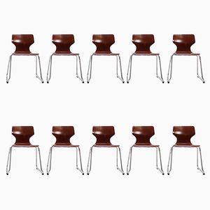Esszimmerstühle von Elmar Flötotto, 1970er, 10er Set