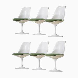 Tulip Chairs von Eero Saarinen für Knoll Inc, 1950er, 6er Set