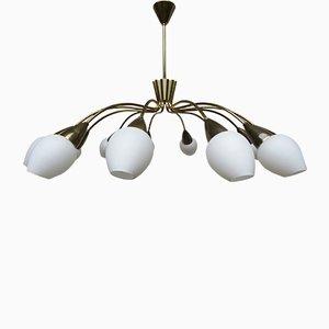 Italian 12-Arm Ceiling Lamp in Brass, 1950s
