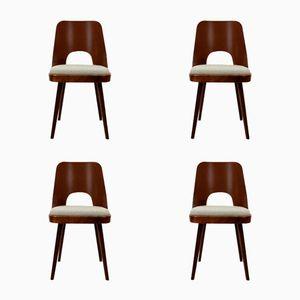 Esszimmer Stühle von Oswald Haerdtl für TON, 1950er, 4er Set