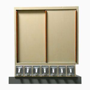Frankfurter Kitchen Cabinet with 7 Haarer Drawers by Margarete Schütte-Lihotzky, 1950s