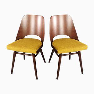 Mid-Century Chairs by Jirak Frantisek for Novy Domov Zavody Mikulas, 1964, Set of 2