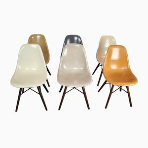 Side Chairs by Charles & Ray Eames for Herman Miller, 1950s, Set of 6