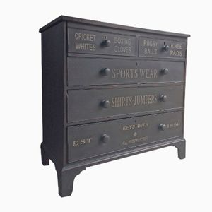 19th Century Victorian Hand Painted Chest of Drawers