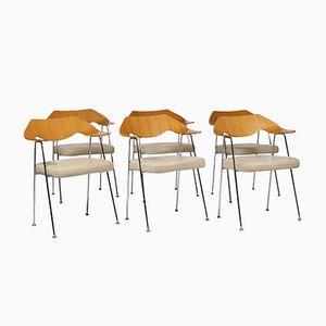 675 Stühle von Robin Day für Habitat, 6er Set