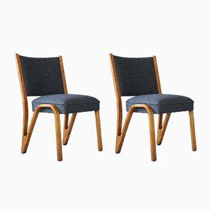 Mid-Century Chairs by Paul Bode for Deutsche Federholzgesellschaft, Set of 2