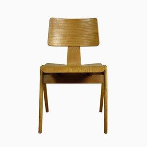 Hillestak Stuhl von Robin & Lucienne Day für Hille, 1950er