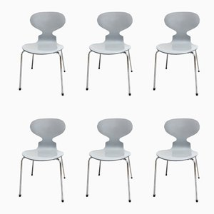 Ant Chairs by Arne Jacobsen for Fritz Hansen, 2002, Set of 6