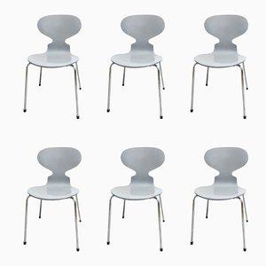 Ant Stühle von Arne Jacobsen für Fritz Hansen, 2002, 6er Set