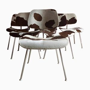 DCM Calf Skin Chairs by Charles & Ray Eames for Herman Miller, 1960s, Set of 6