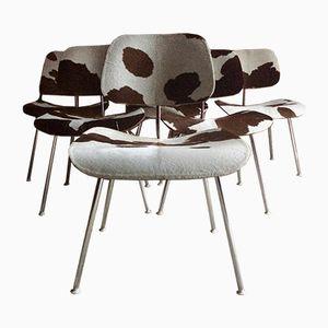 DCM Kalbsleder Stühle von Charles & Ray Eames für Herman Miller, 1960er, 6er Set