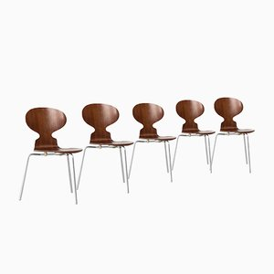 Vintage Rosewood Ant Chairs by Jacobsen Arne for Fritz Hansen, 1950s