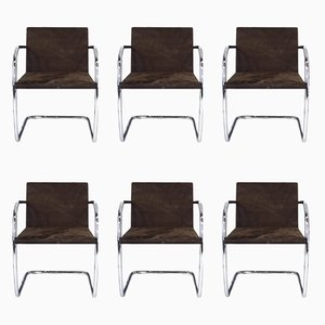 MR50 Brno Tubular Steel & Suede Chairs by Ludwig Mies van der Rohe for Knoll International, 1980s, Set of 6