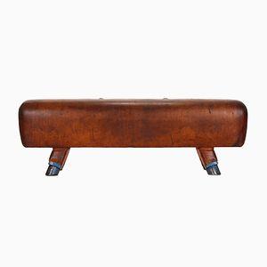 Vintage Leather Pommel Horse Bench, 1930s