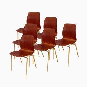 Beistellstühle von Pagholz Flötotto, 1960er, 6er Set