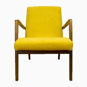 Model 300-138 Armchairs from Bystrzyckie Furniture Factory, 1960s, Set of 2