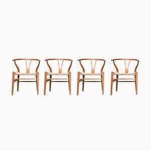 Dänische Vintage CH24 Y-Stühle von Hans Wegner für Carl Hansen & Son, 4er Set