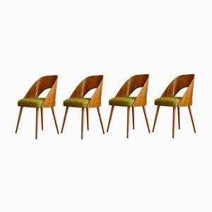 Chaises de Salon par Antonín Šuman pour Dřevopodnik ONV Písek, 1962, Set de 4