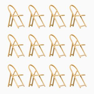 Arca Folding Chairs by Gigi Sabadin for Crassevig, 1970s, Set of 12