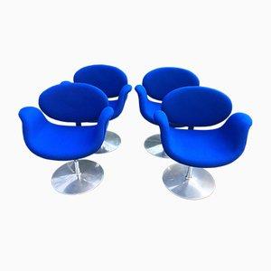 Kleine Tulip Stühle von Pierre Paulin für Artifort, 1970er, 4er Set