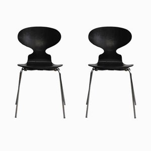 Vintage Model 3100 Ant Chairs by Arne Jacobsen for Fitz Hansen, 1967, Set of 2